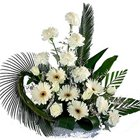 Dreamy Full of Wishes Carnations N Gerberas Bunch