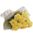Tender Bouquet of Yellow Carnations