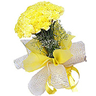 Lovely Carnations Arrangement in Yellow Colour