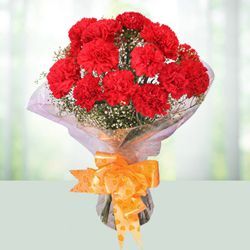 Sweetest Bunch of Carnations in Red Colour