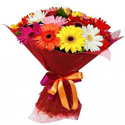 Stimulating Mixed Gerberas Bouquet