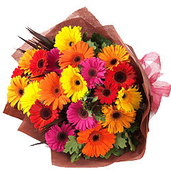 Ornamental Bunch of 15 Multicolored Gerberas