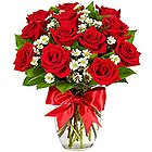 Blossoming Peace of Love Red Dutch Roses in a Vase