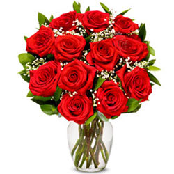 Precious Red Roses in a Glass Vase