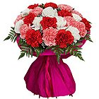 Delightful Elegance Mixed Carnations Collection