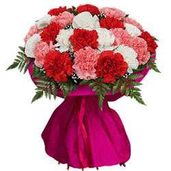 Lovely Mixed Carnations Blooming Bunch