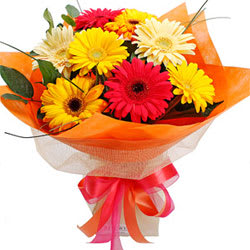 Impressive Vision of Beauty Ten Gerberas Bunch