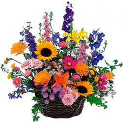 Cherished Selection of Mixed Seasonal Flowers in a Basket