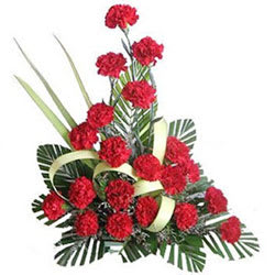 Impressive Assortment of Red Carnations