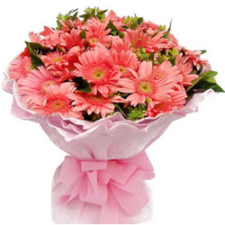 Adorable Bouquet of Pink Gerberas