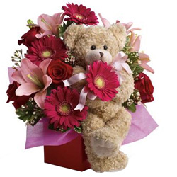 Sending Mixed Flowers Arrangement N Teddy