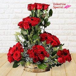 Ceaseless Marvel Valentine�s Day Rose Gathering