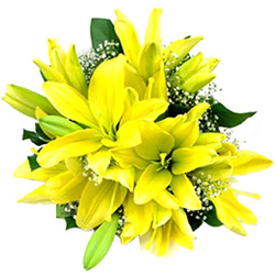Deliver Yellow Lilies Bouquet