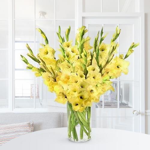 Wonderful Yellow Gladiolus in a Glass Vase