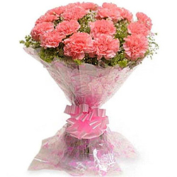 Buy this outstanding Hand Bouquet of Pink Carnations