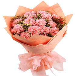 Buy a pretty Bunch of Pink Carnations in tissue wrap