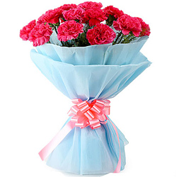 Buy this pretty Hand Bunch of Pink Carnations in a tissue wrap