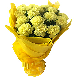 Just buy an outstanding Bouquet of Yellow Carnations in a tissue wrapping