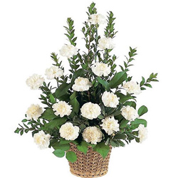 Buy outstanding White Carnations online basket