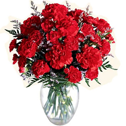 Just buy pretty Red Carnations in a glass vase