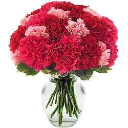 Buy these delicate Pink & Red Carnations Online in a glass vase