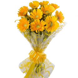 Designer Bouquet of Yellow Gerberas