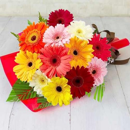 Beautiful Bouquet of One Dozen Mixed Gerberas