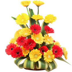 Eye-Catching Red N Yellow Gerberas Arrangement