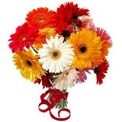 Dazzling Arrangement of Mixed Gerberas in Glass Vase