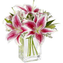 Mesmerizing Selection of Pink Lilies in Glass Vase