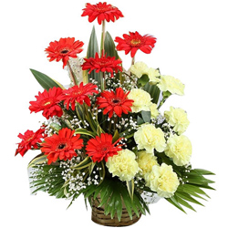 Fantastic Yellow Carnations & Red Gerberas Basket