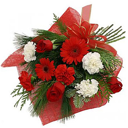 Luminous Red Roses, Red Gerberas with White N Red Carnations Hand Bunch