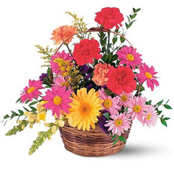 Graceful Carnations N Gerberas presented in a Basket