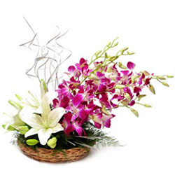 Eye-Catching of White Lilies & Orchids Basket Arrangement
