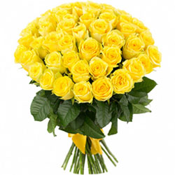 Sophisticated Bundle of Yellow Color Roses