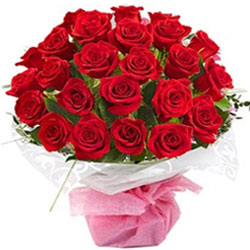 Enchanting Bouquet of Two Dozen Red Roses