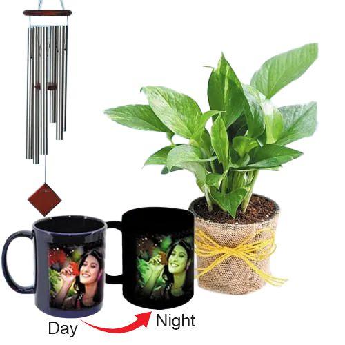 Wonderful Personalized Photo Radium Mug with Money Plant N Wind Chime