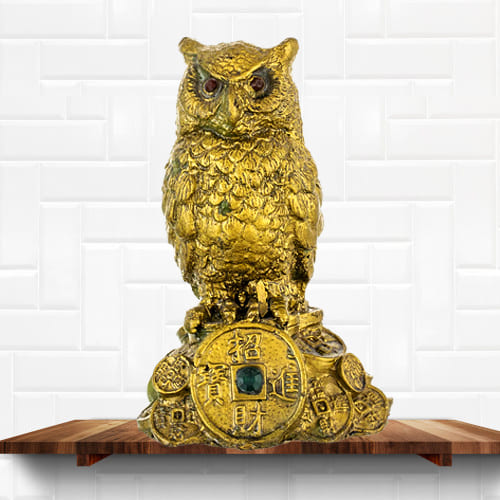 Mesmerizing Feng Shui Owl Showpiece for Money and Wisdom