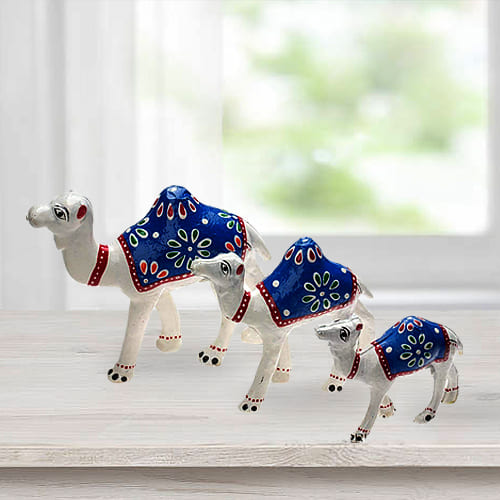 Beautiful 3pc Camel Showpiece Set