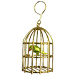 Golden Plated Stylish Bird Cage with Colorful Parrot