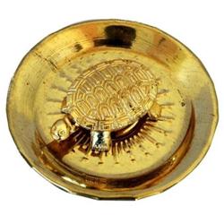 Golden Icchapurti Tortoise