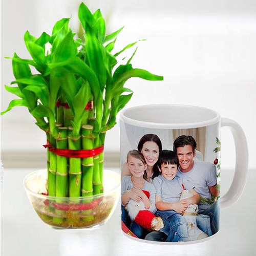 Online Personalized Coffee Mug with Two Tier Bamboo Plant