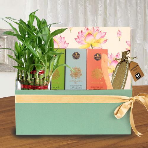 Attractive Healing Gift Combo for Mother