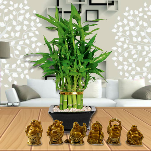 Buy 2 Tier Bamboo Plant with Set of Laughing Buddha