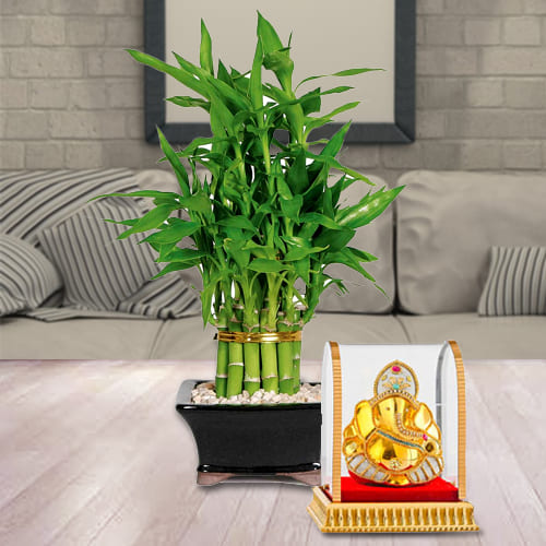 Buy Gift of Vinayak Ganesh Murti with 2 Tier Lucky Bamboo Plant