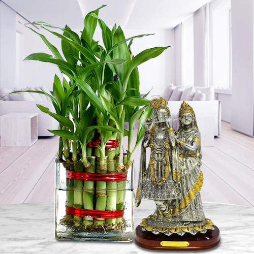 Eye-Catching 2 Layer Bamboo Plant in Glass Pot with Radha Krishna Idol