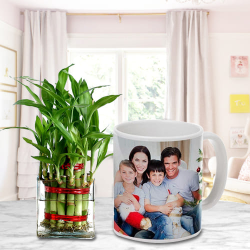 Bright Selection of Two Layer Good Luck Bamboo Tree in Personalized Coffee Mug