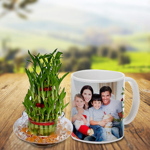 Send 3 Tier Bamboo Plant with Personalized Coffee Mug