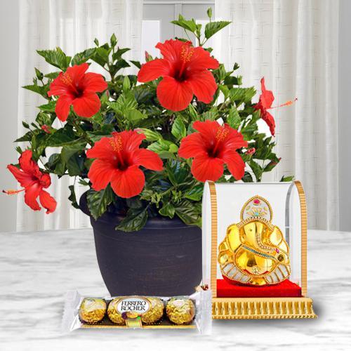 Holy Vinayak Murti with Hibiscus Flower Pot N Chocolate
