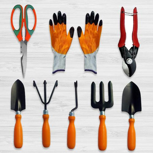 Attractive Garden Care Tools Gift Hamper